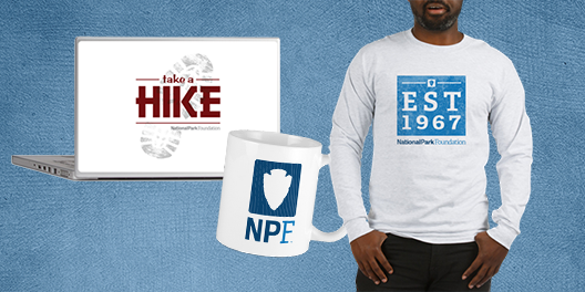 A collage of NPF merchandise, including a laptop decal, a mug, and a long-sleeved shirt