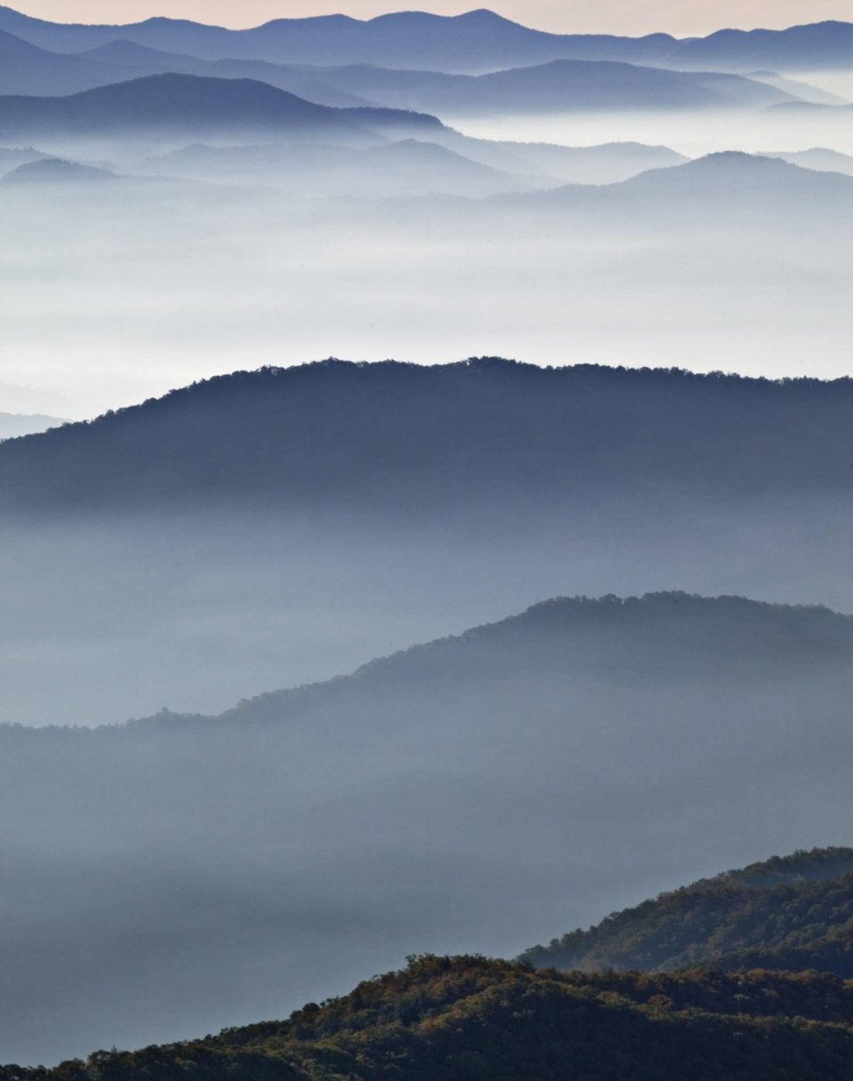 The fog rolls in at Great Smoky Mountain