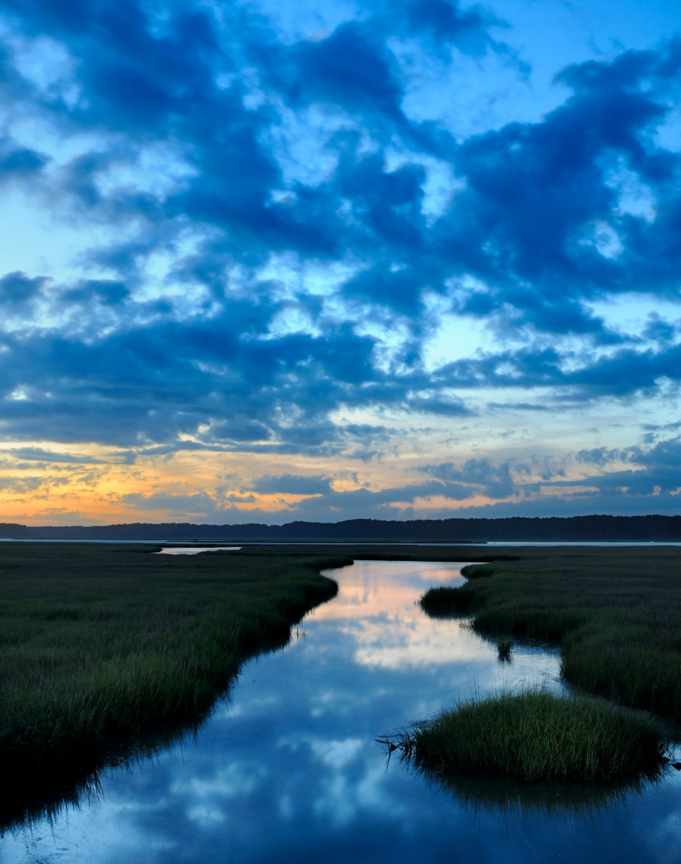 The marshlands and tidewater at sunset in Assateague Island