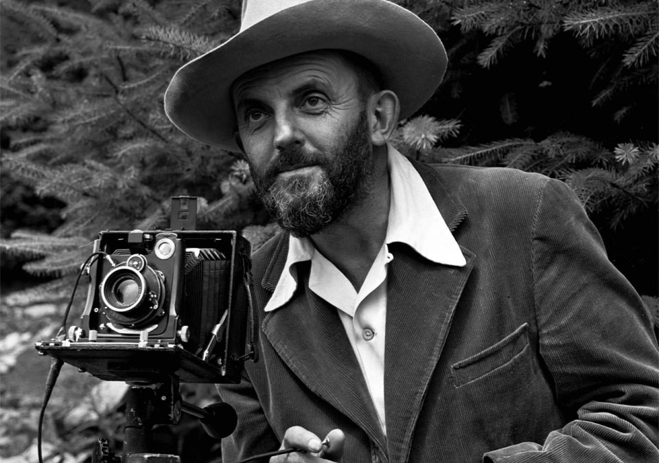 Ansel Adams frames a shot in the trees