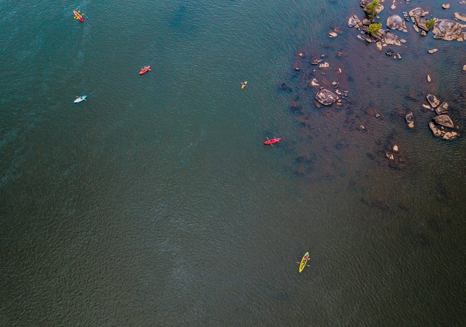Kayaks on the Congaree River