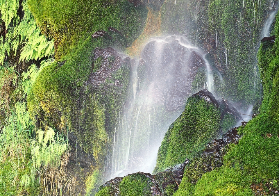 Waterfalls create prisms at Olympic National Park