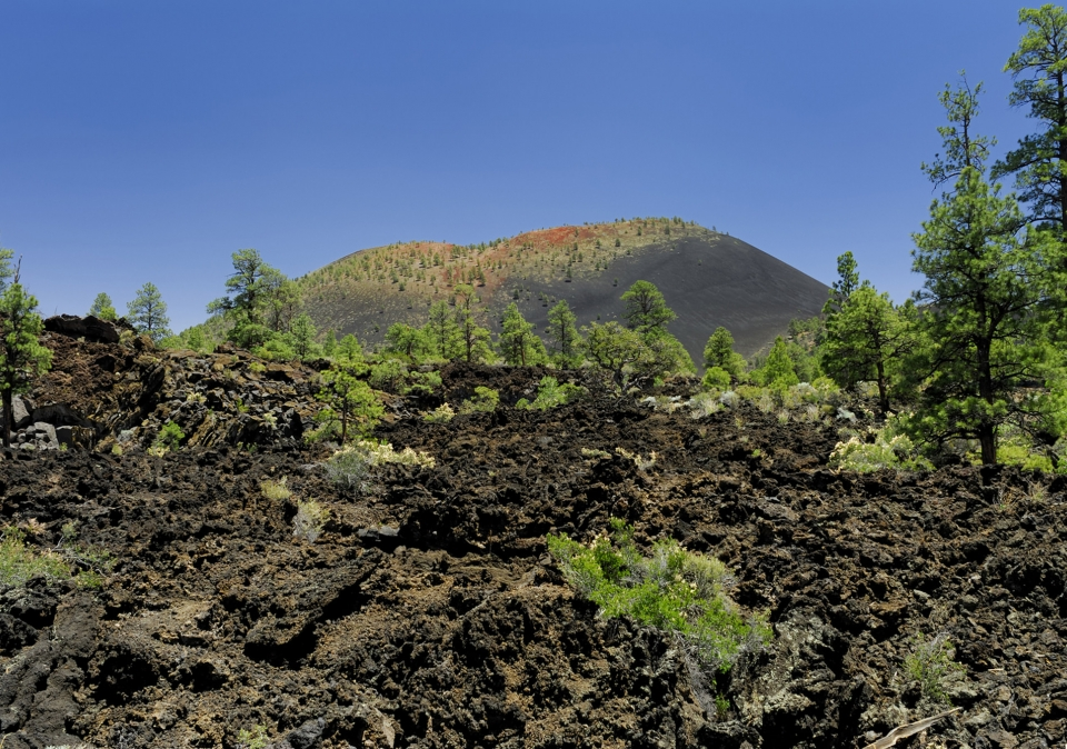 Sunset Crater Volcano with trees and brush