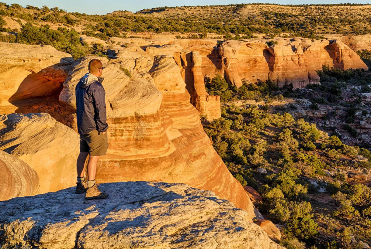 Hiker looking across a canyon
