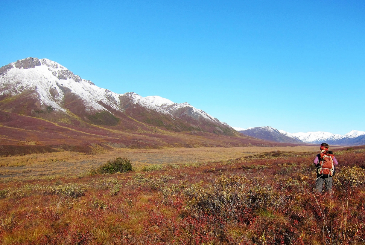 Image of hiker near snow-capped mountains at Noatak National Preserve