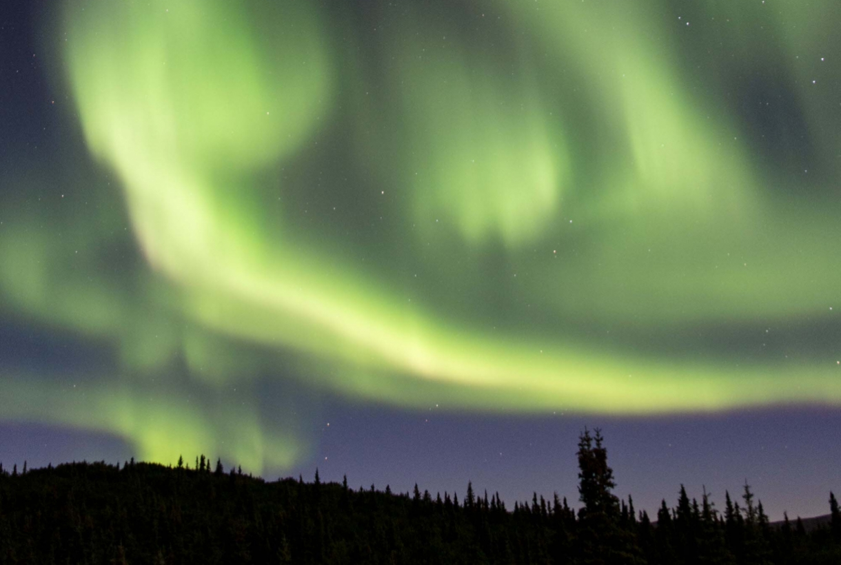 Green lights of the Aurora Borealis over Denali National Park's night sky