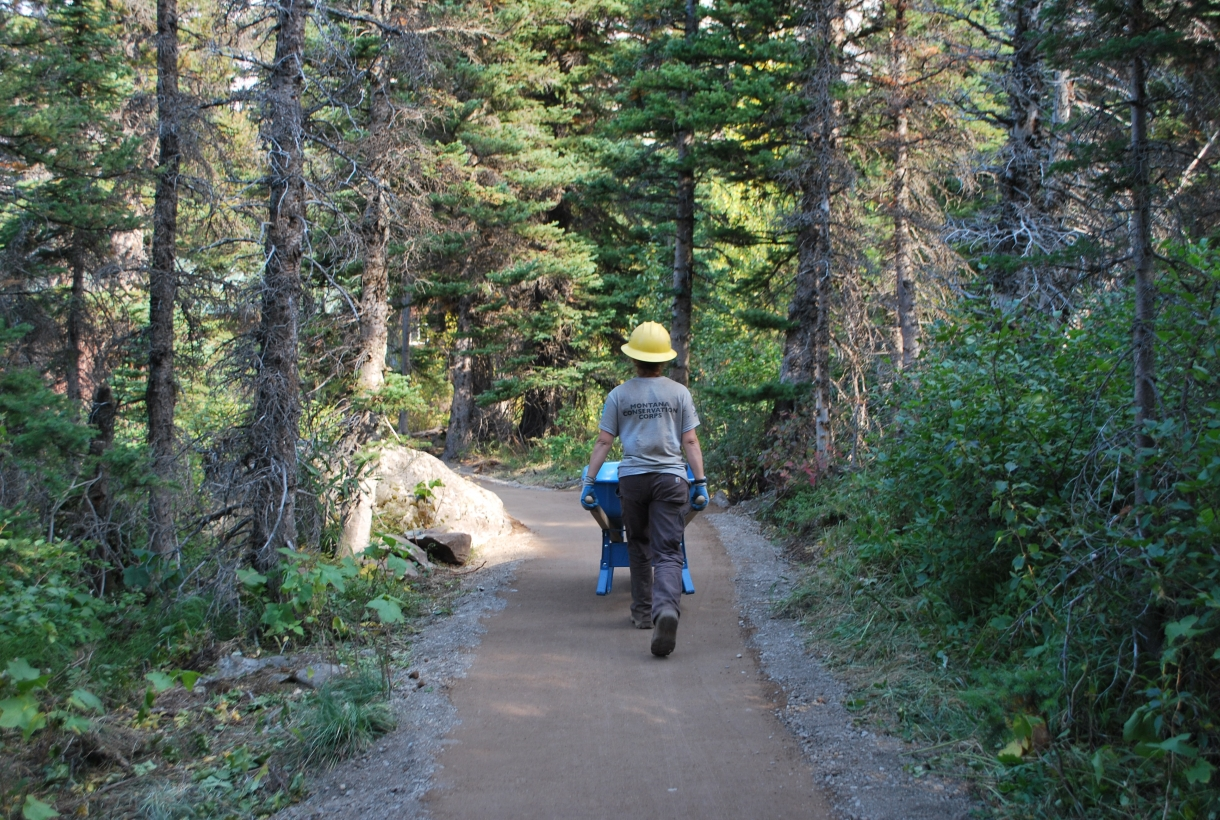 A young person walking away down a path with a blue wheelbarrow at Glacier National Park