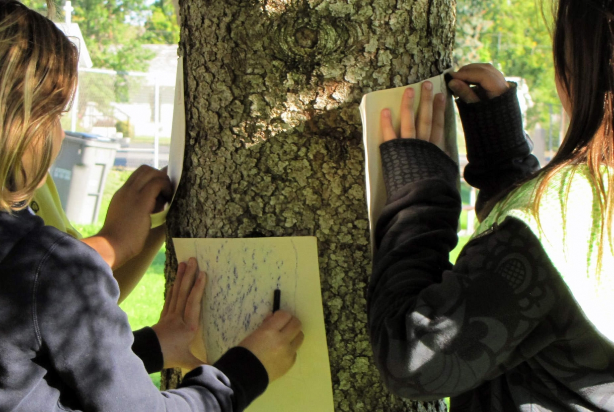 Students capturing a bark rubbing