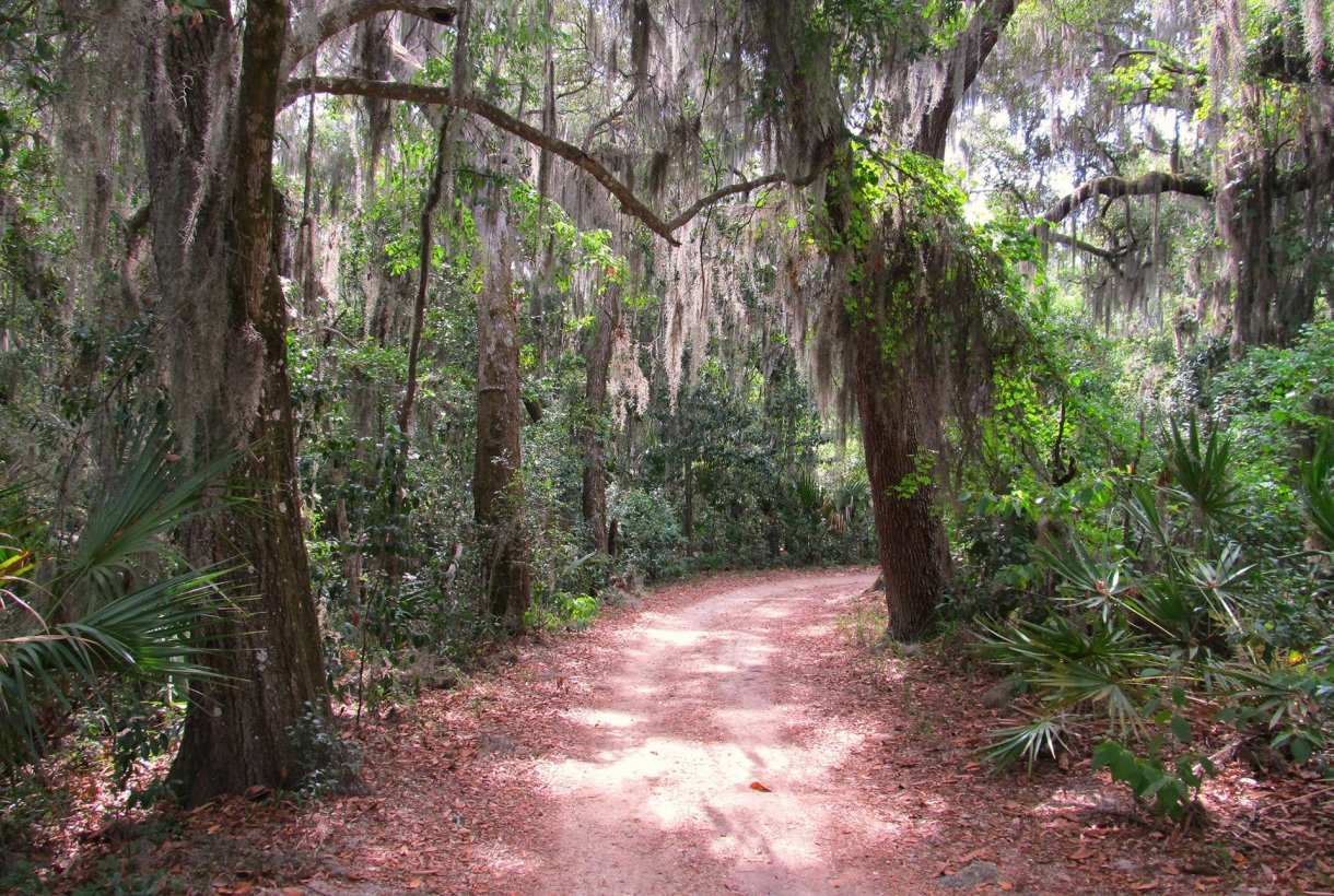 Dirt trail at Fort Caroline National Memorial