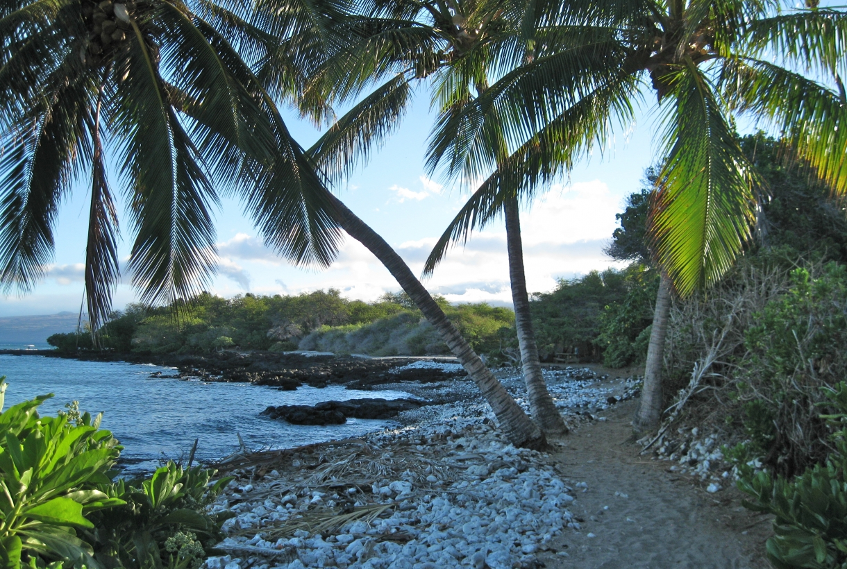 Beach view along the Ala Kahakai National Historic Trail