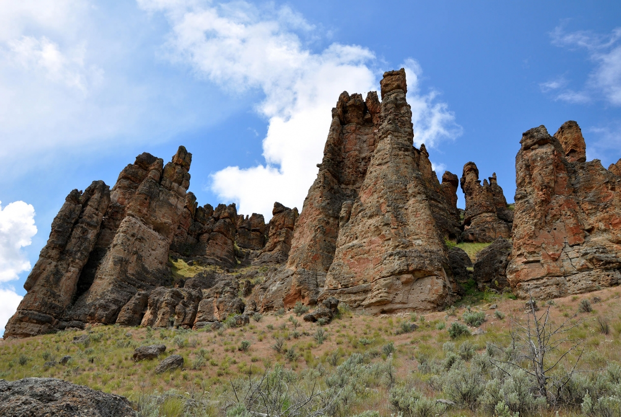 The layered rock of the Clarno palisades