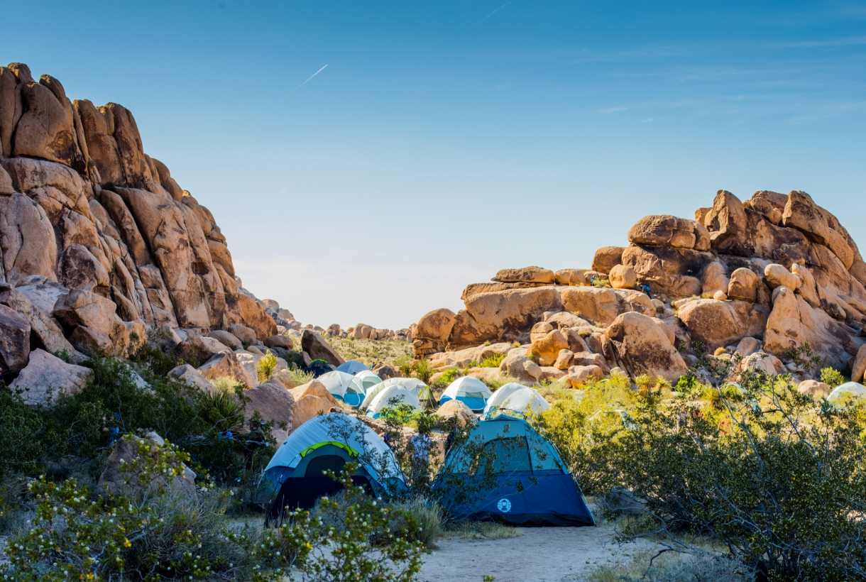 Coleman tents at Joshua Tree National Park