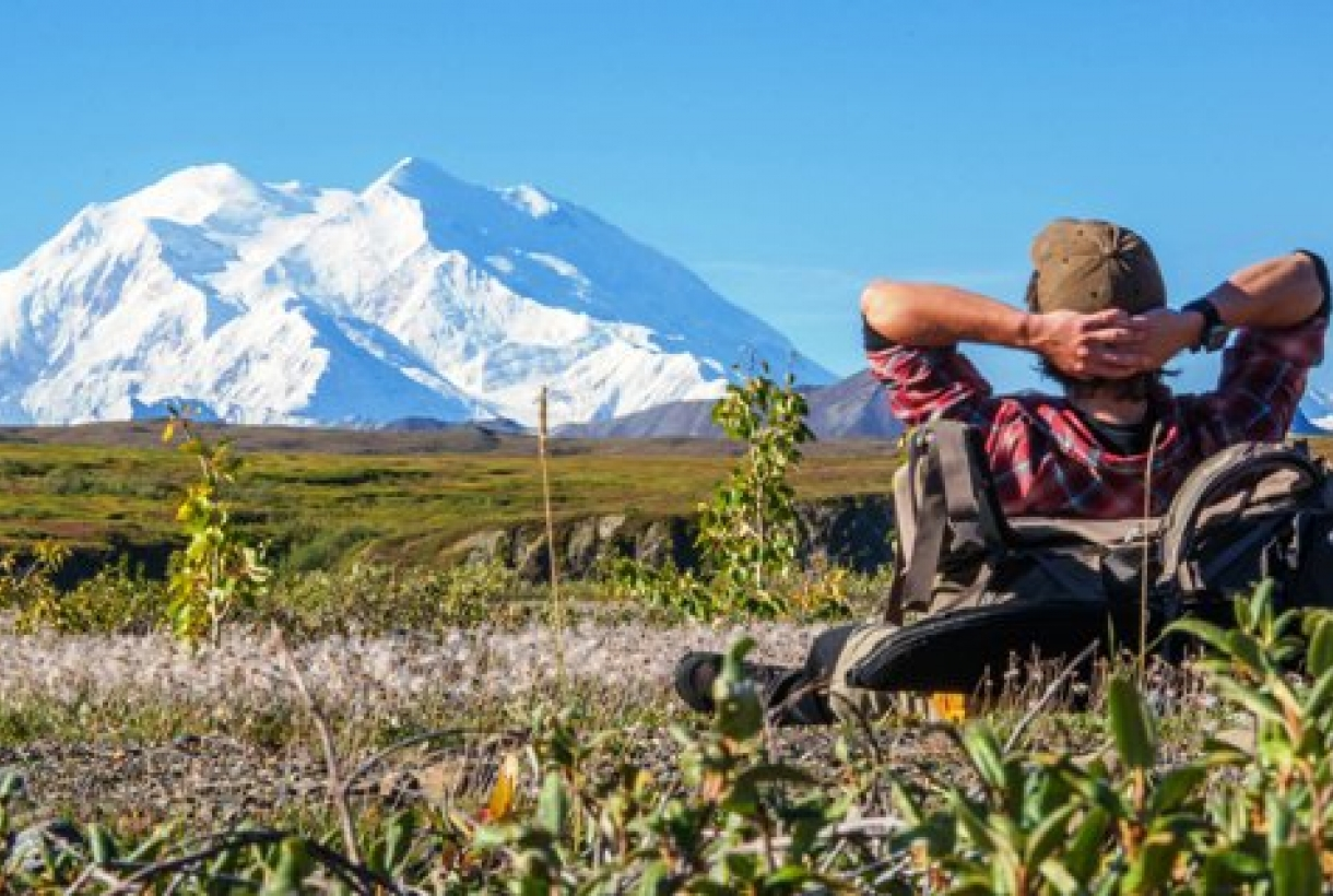 Man looking at mountain at Denali park