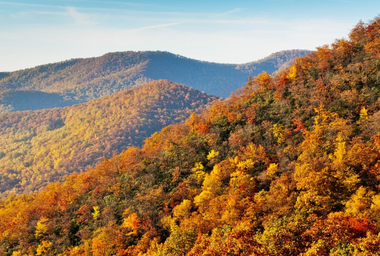 The leaves have turned during fall along the Blue Ridge Parkway