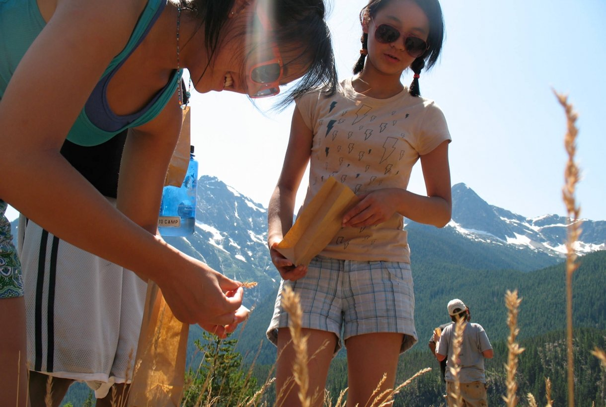 Girls studying plants in Rocky Mountain National Park