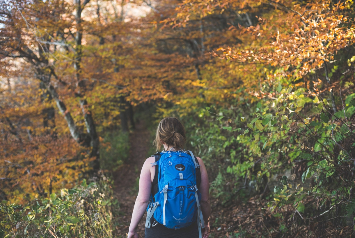 A woman hikes through the fall leaves