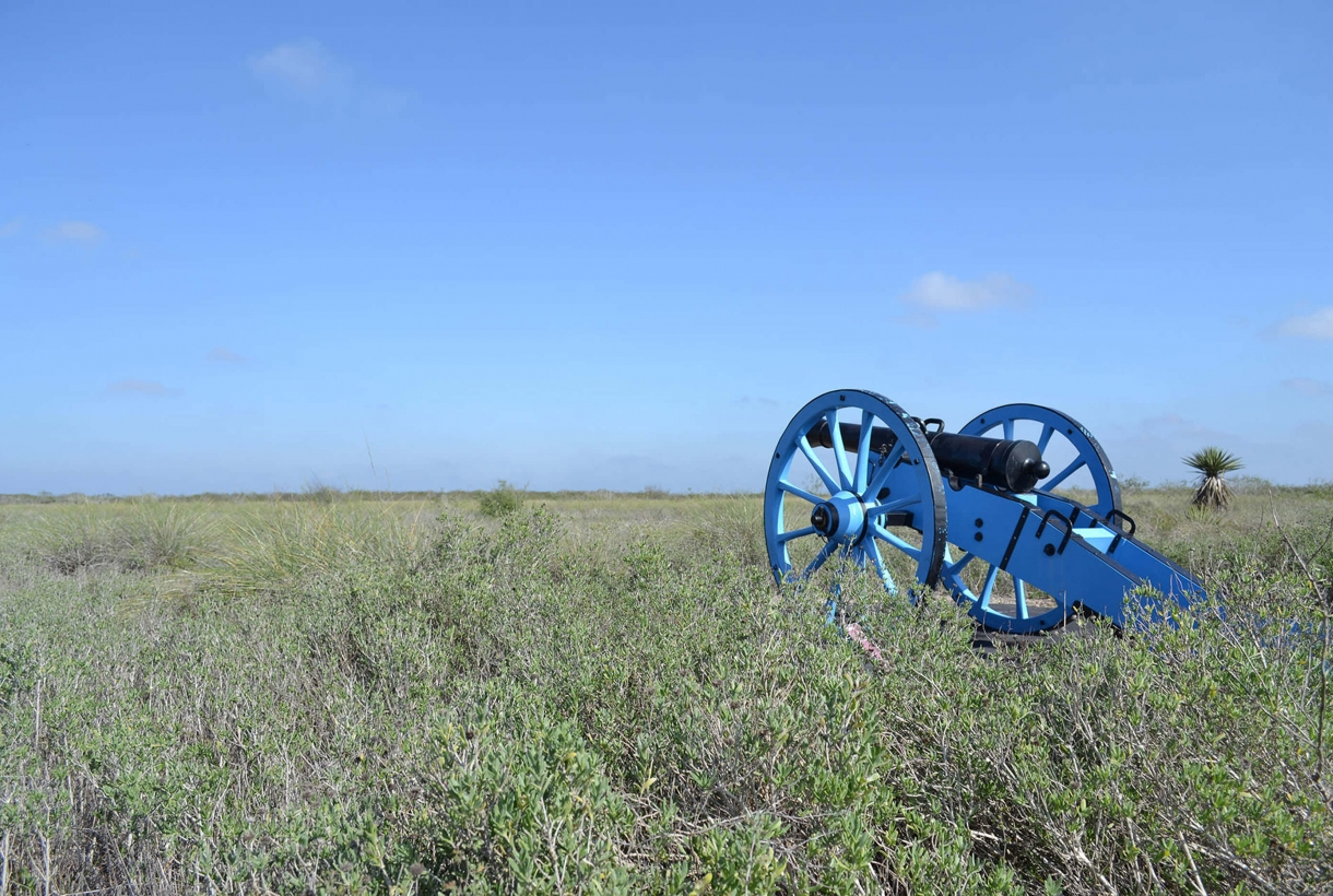 Blue cannon in tall grass