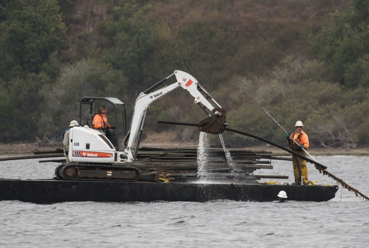 Crew with heavy machinery working on cleaning massive debris out of Point Reyes National Seashore