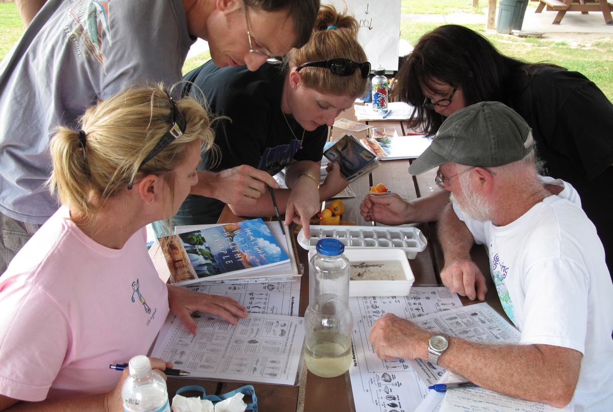 Teachers identifying macroinvertebrates