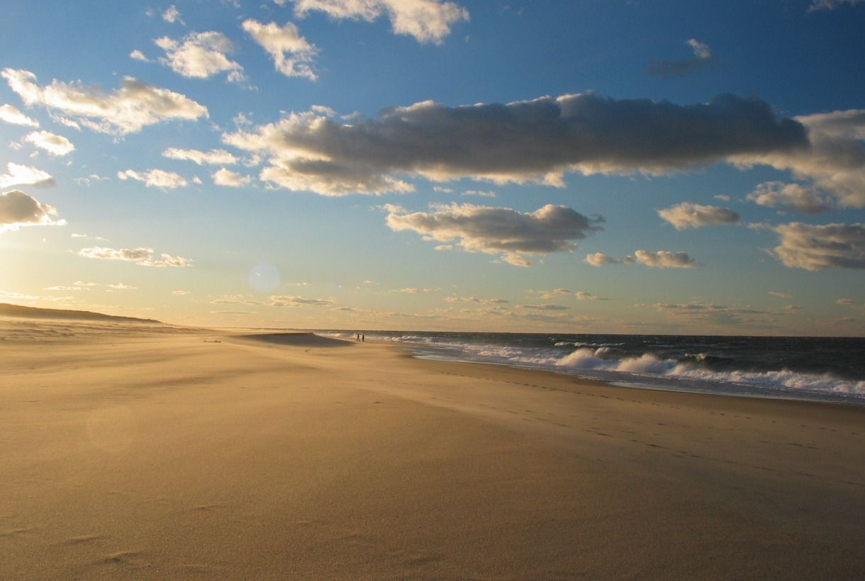 by cape charles cod essay field national photographic seashore This area includes the cape cod national seashore,  bixby creek takes its name from charles henry bixby,  in a brief essay on housing,.