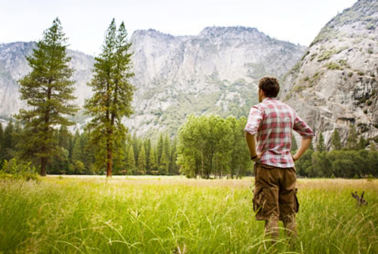 Man standing in meadow looking at trees and mountains