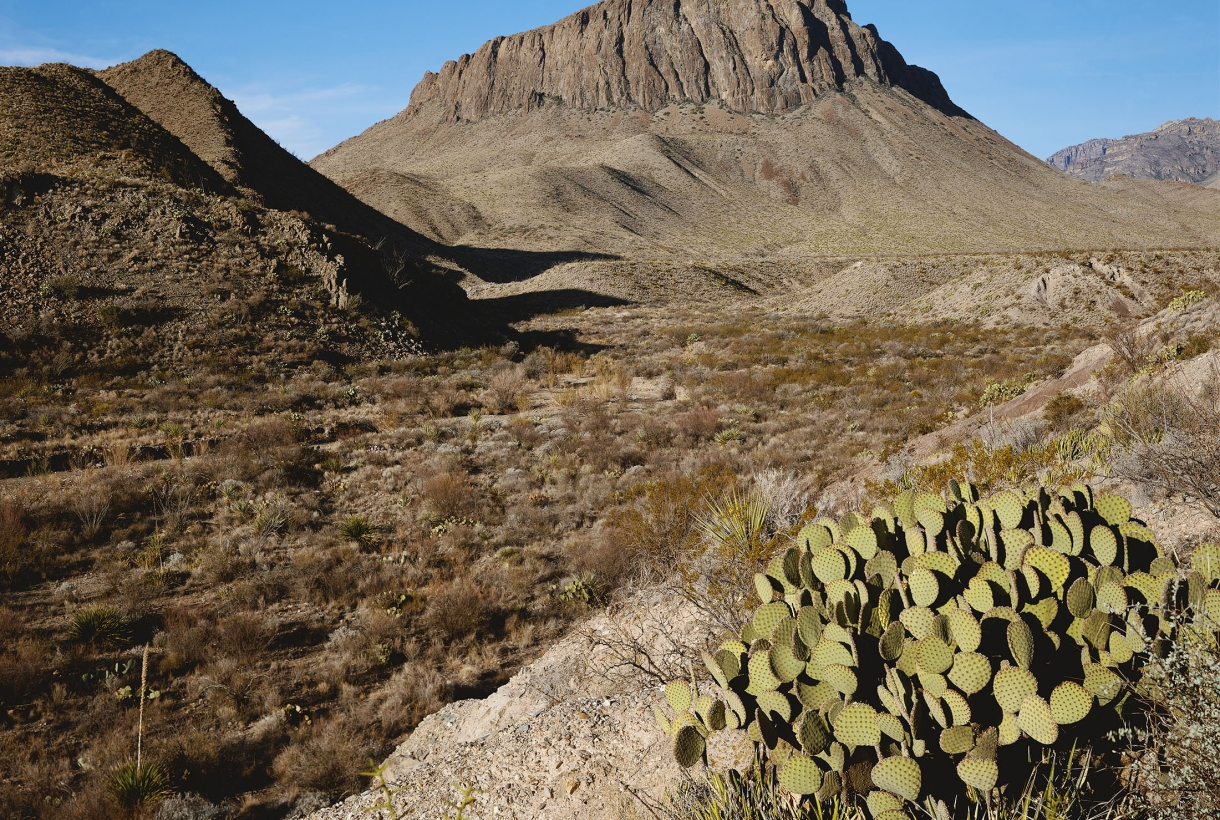 big bend national park guys 10 cool things to see in big bend national park  bend is the largest urban area in central oregon destination the best things to see and do in orlando, florida.