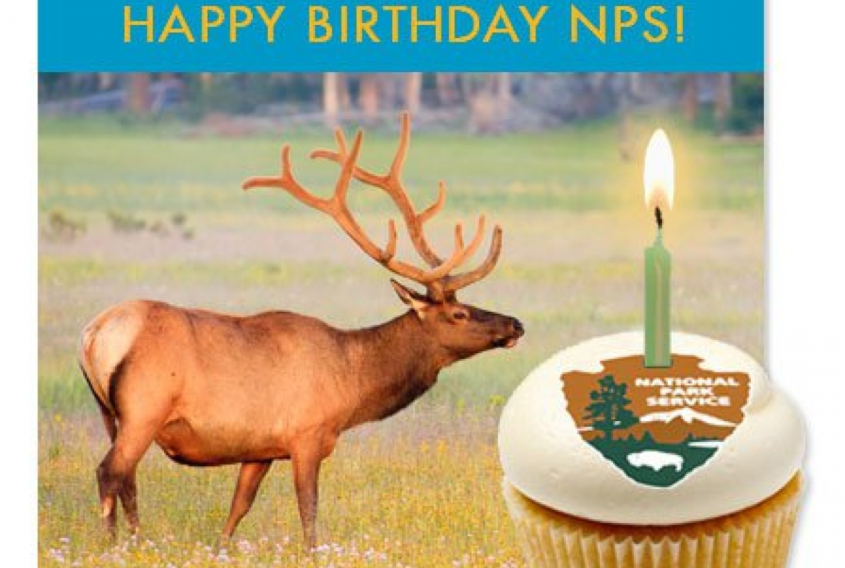 NPS happy birthday card and cupcake