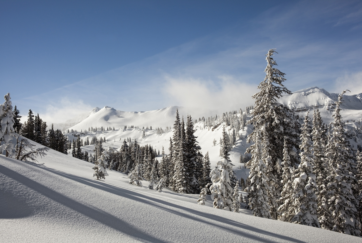 A snow-covered mountains, dotted with evergreen trees