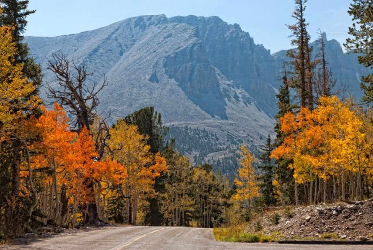 Driving route through Great Basin National Park