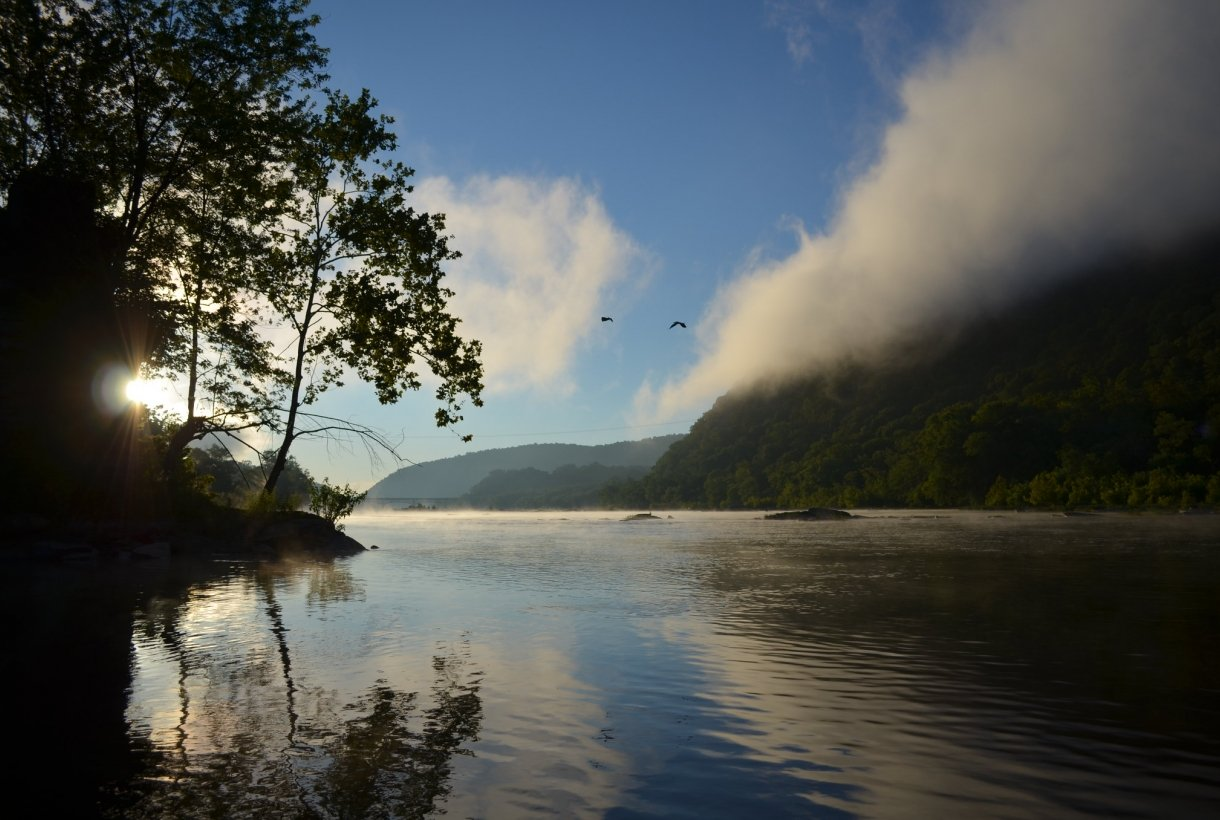Mist crawls over a crystal river, bordered by trees, sparkles in the early sunlight. Two birds fly o