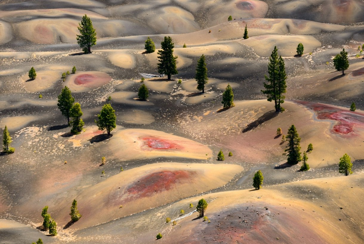 A view from Cinder Cone: Green trees sprinkled between the vibrant Painted Dunes with their red and purple centers at Lassen Volcanic National Park.