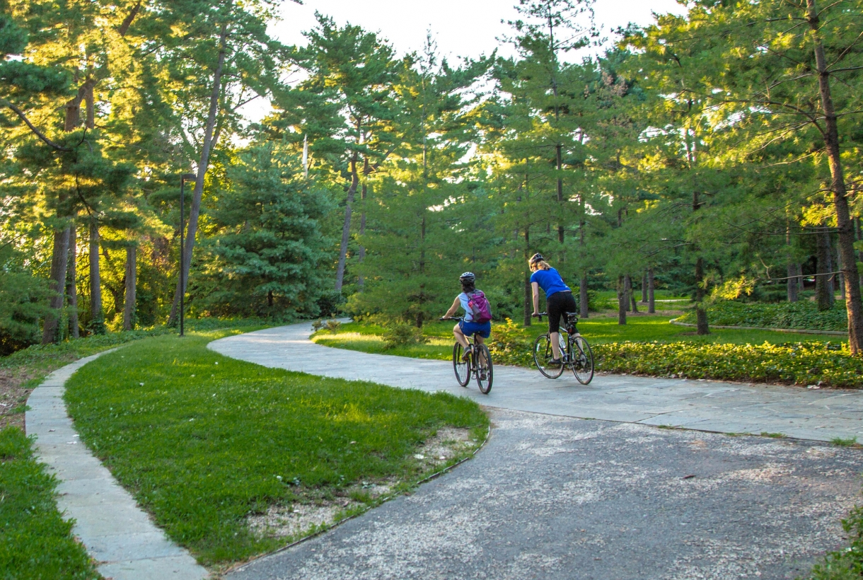 Two bicyclists on a paved trail through a grove