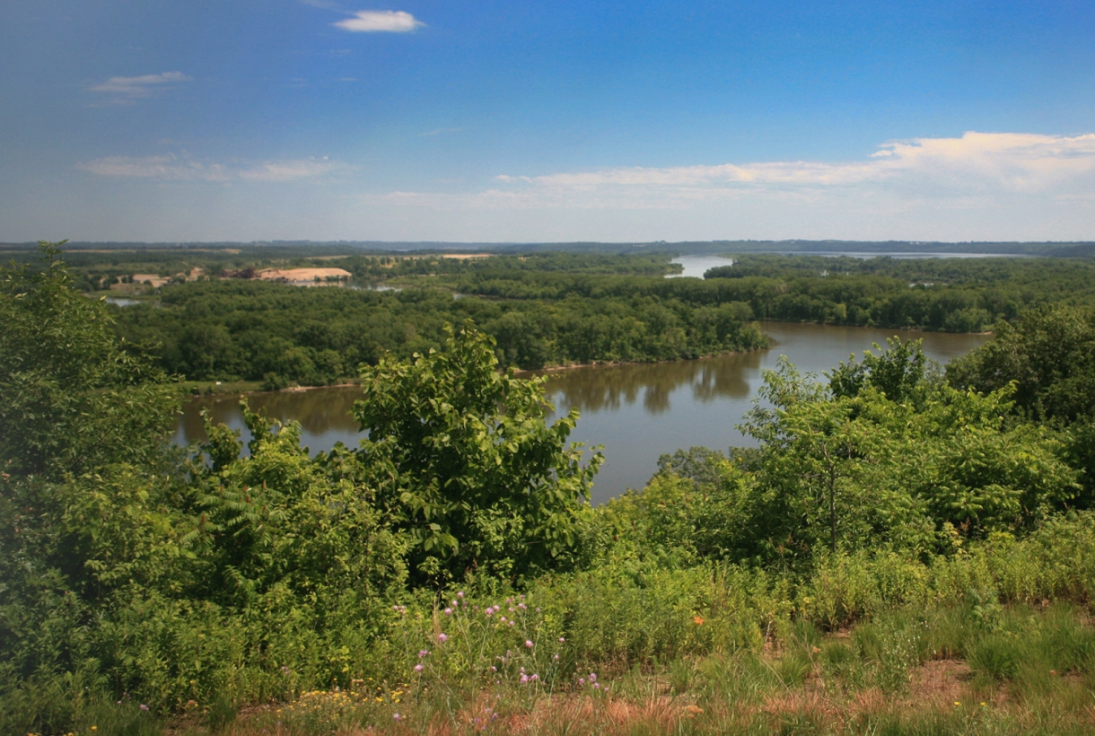 A green floodplain forest surrounds the path of the Mississippi River below the bluffs
