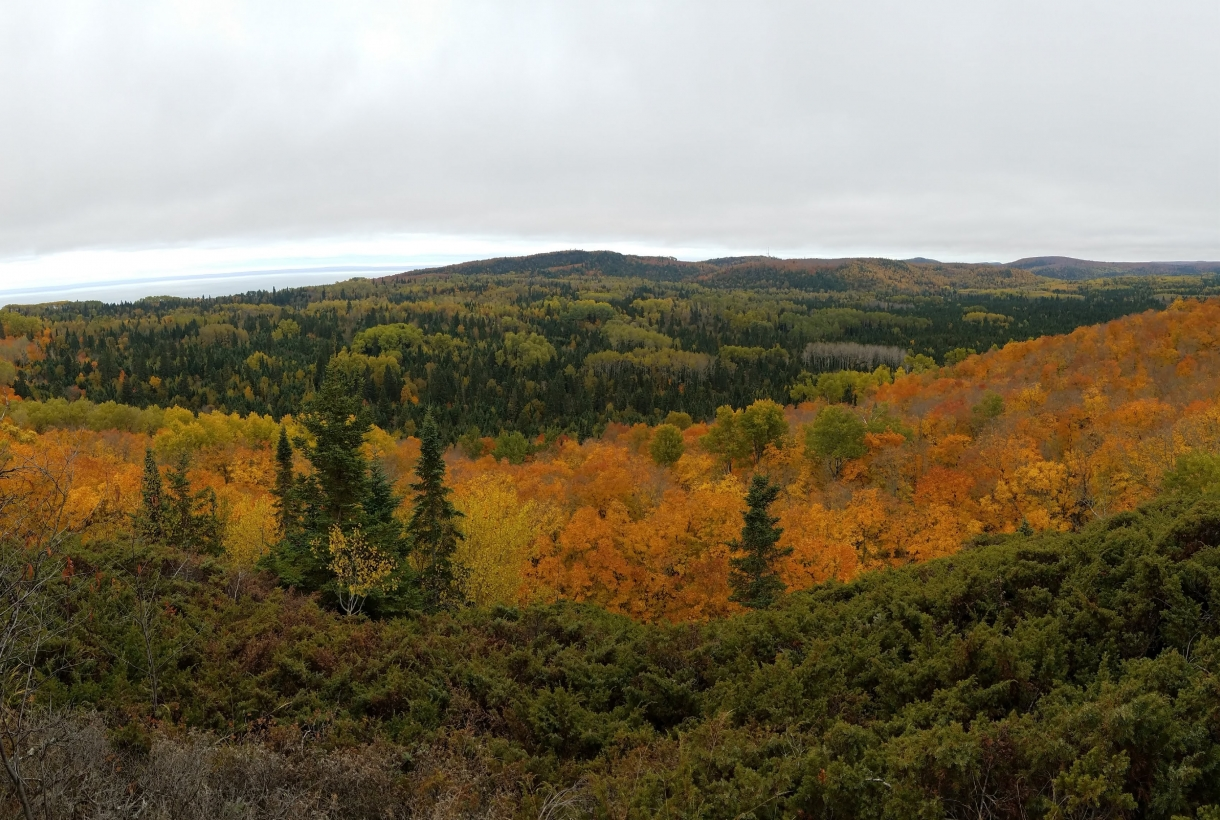 Green, orange, red, and yellow trees in the hills of North Country National Scenic Trail