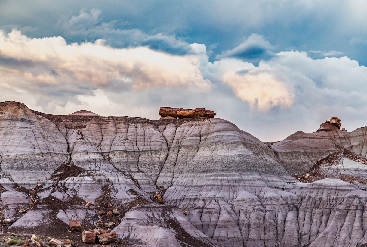 Petrified logs erode from the top of a ridge at Blue Mesa under stormy skies