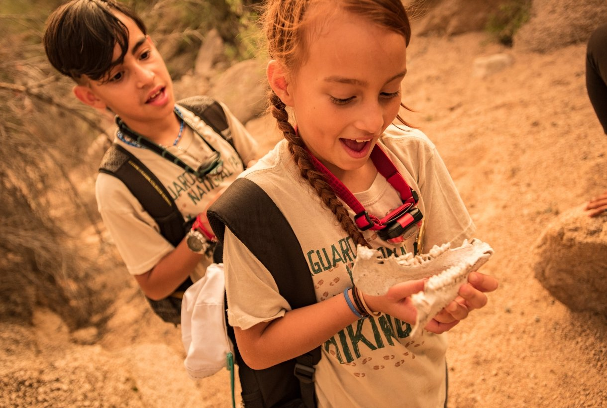 Two students examining reconstructed fossils at Saguaro National Park