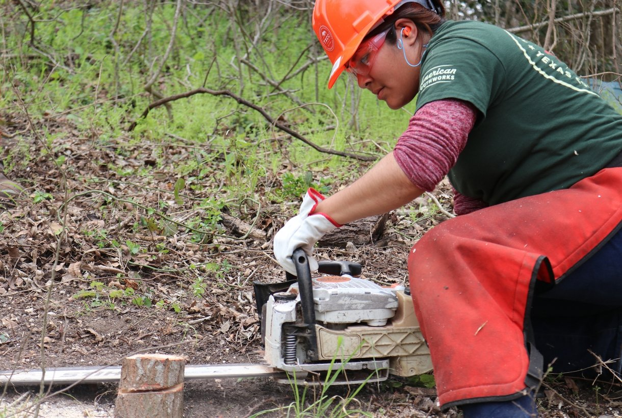 A Cultural Landscape Apprentice uses a chainsaw on a tree trunk
