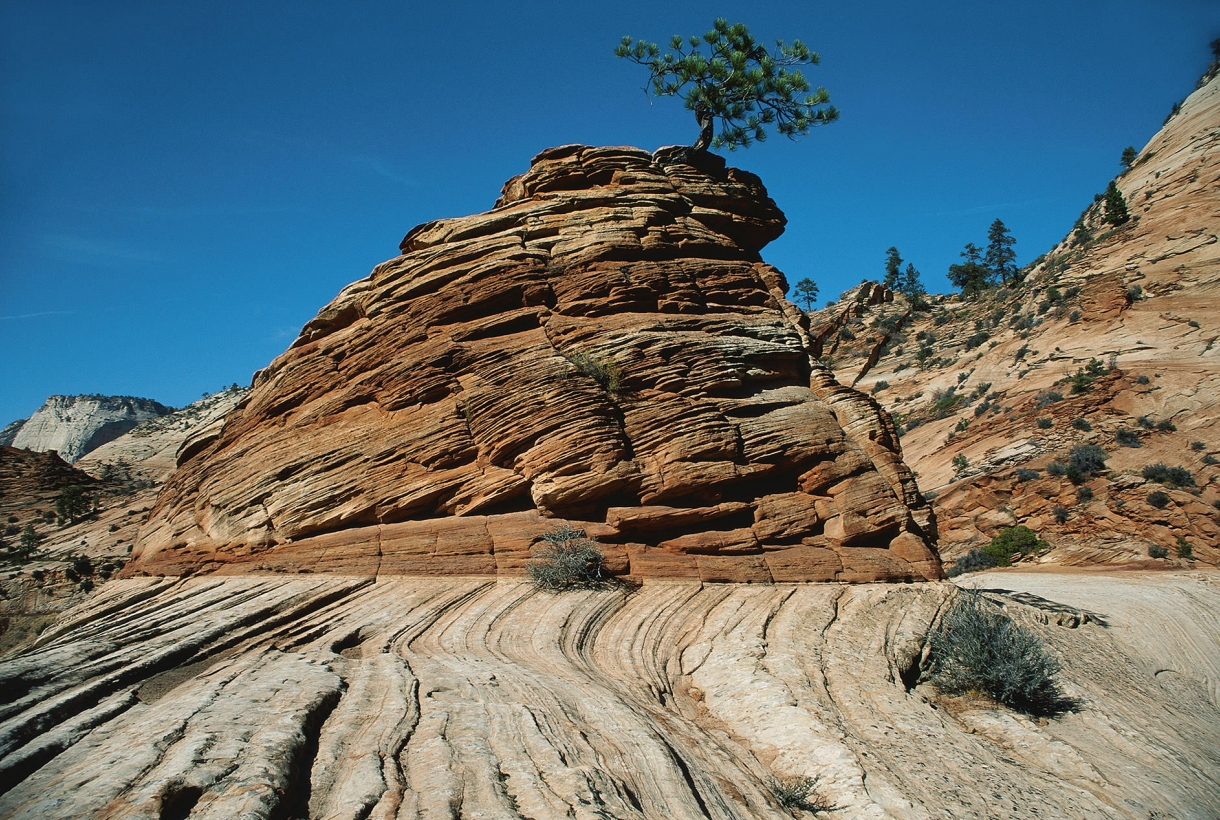 Image of ridged red stone cliff at Zion National Park