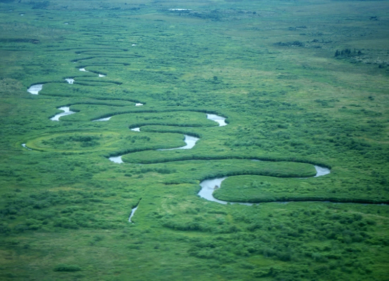 The winding Alagnak River through the green trees of Katmai National Park & Preserve