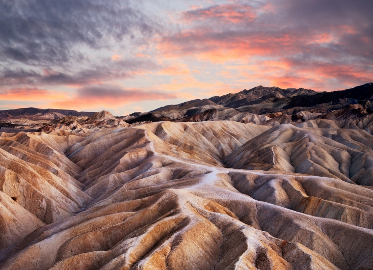 A pink sunset casts pink and purple shadows across the dunes in Death Valley National Park