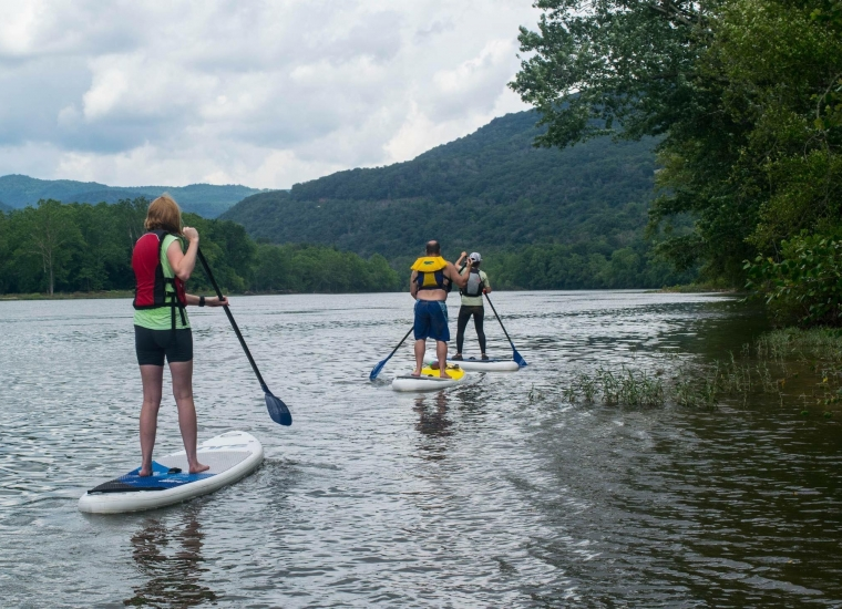 3 people on stand-up paddleboards on the New River Gorge river surrounded by green trees