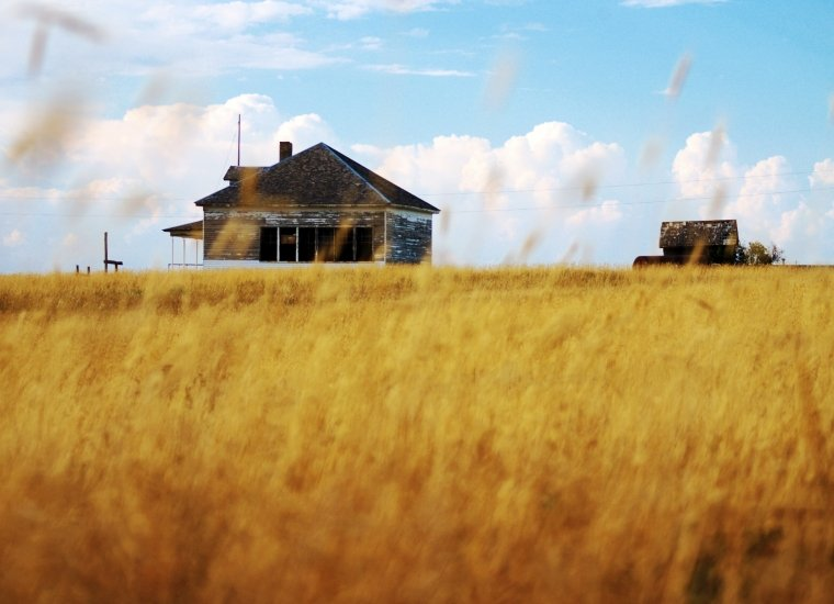 District 1 Schoolhouse at Nicodemus National Historic Site through a field of wheat