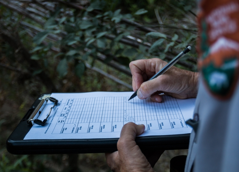 A ranger fills out a survey form for a monitoring project