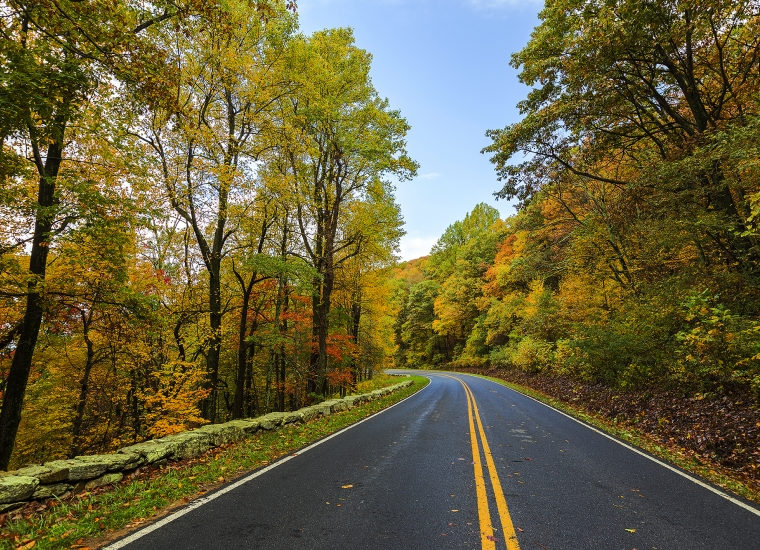 A two-way paved road stretches into the distance, lined on either side with trees, changing color in the autumn