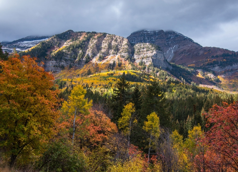 Red, yellow, and green trees in front of the snow-dusted Mount Timpanogos from the Alpine Loop