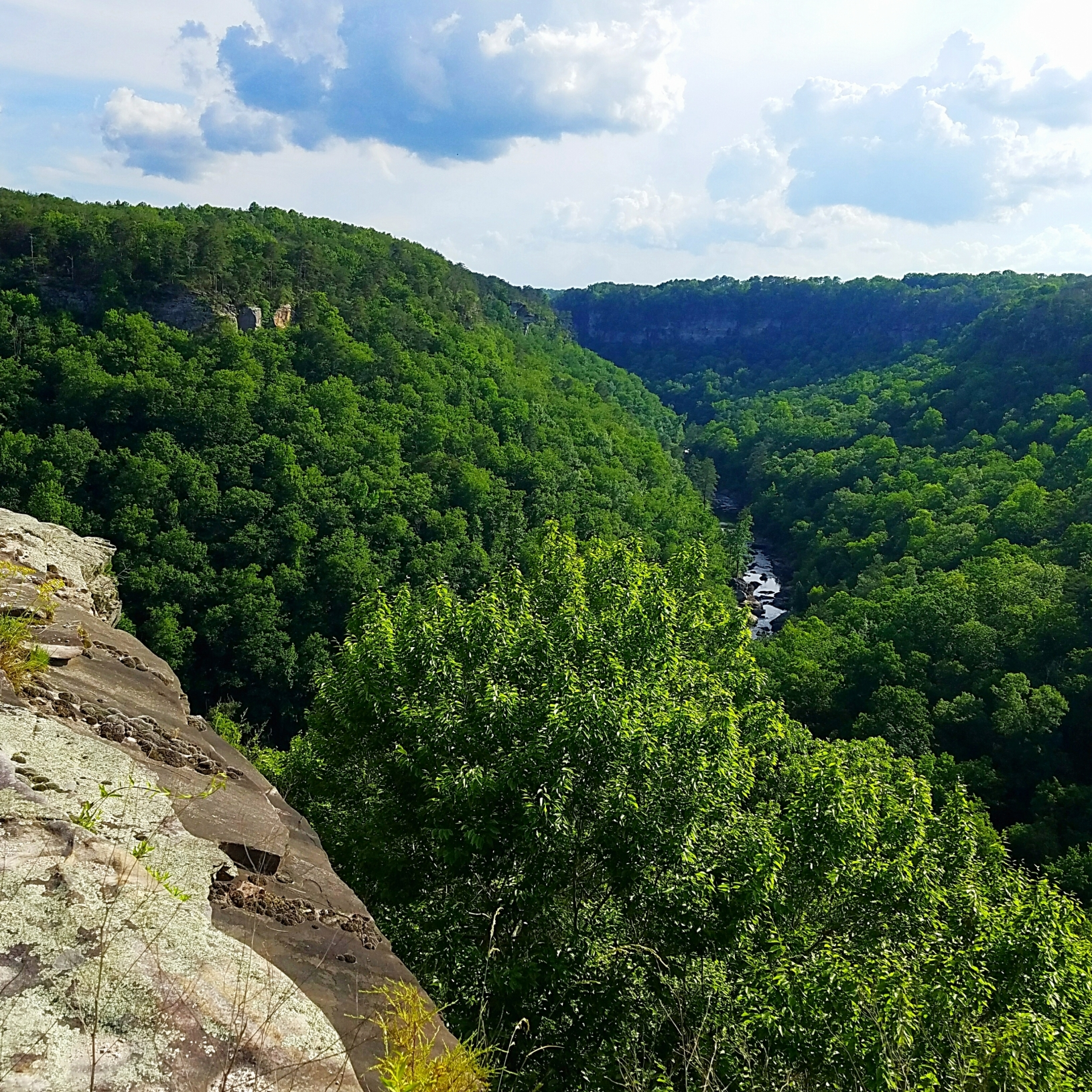 Gorgeous view of Little River Canyon in Ft Payne, Alabama as seen from Canyon View Overlook along scenic Canyon Rim Parkway
