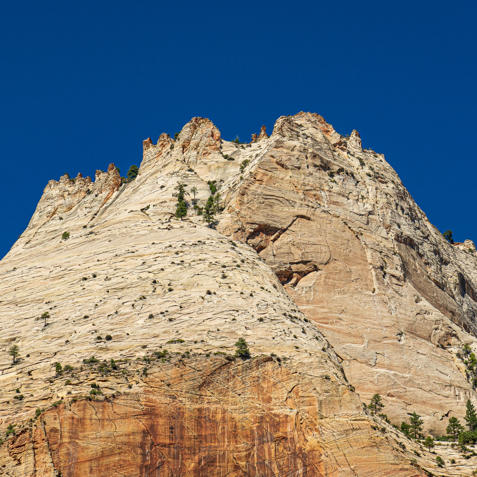 Zion National Park picture