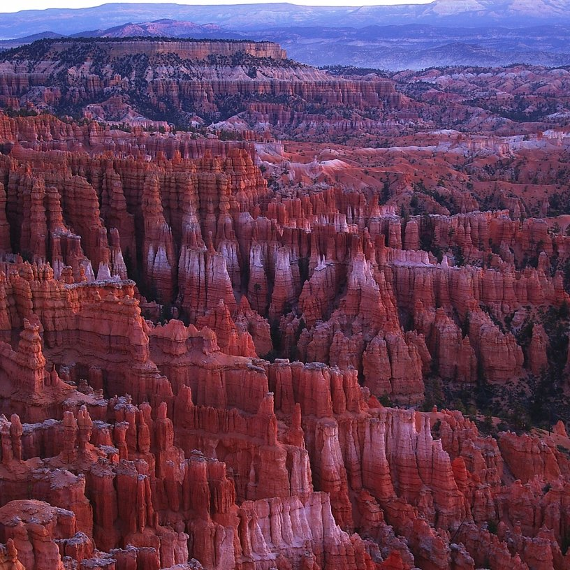 Hoodoo's of Bryce Canyon National Park.