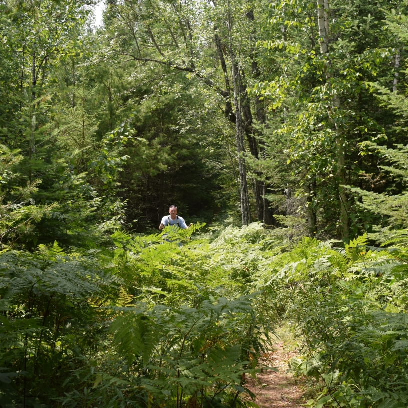 Hiking in Voyageurs National Park
