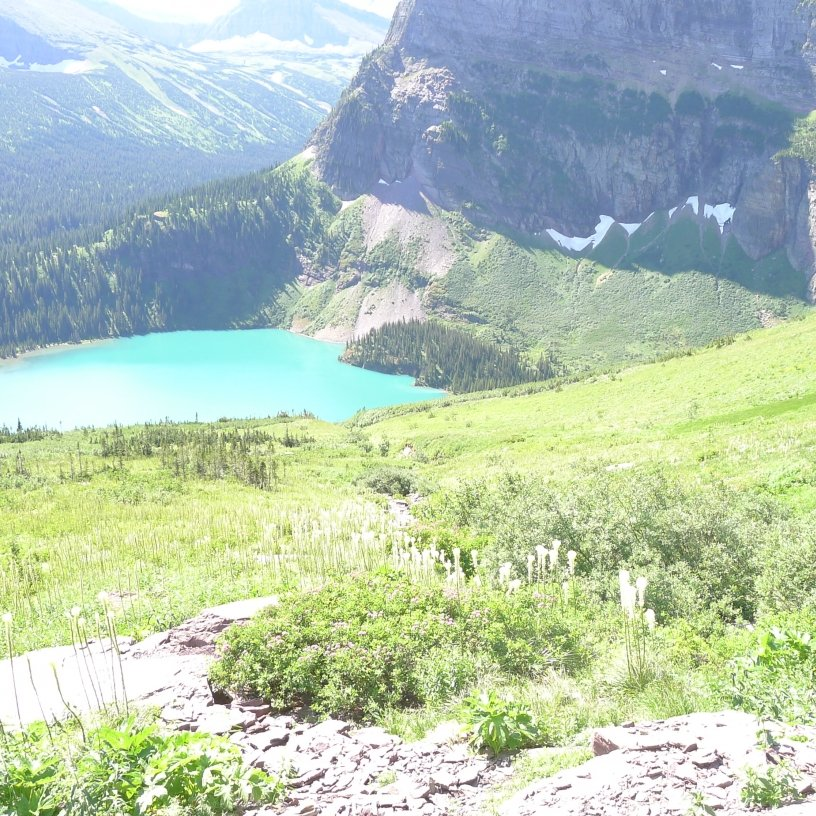 View of Grinnell Lake across a slope with beargrass